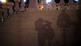 Shadow of a woman on wall background Stock Photos