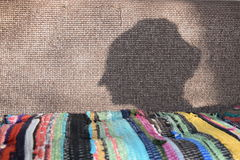The shadow of a womans head Stock Photography