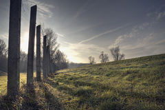 Shadows. HDR with trees  and pylons wintertime Royalty Free Stock Photo