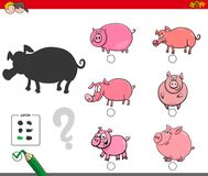 Shadows activity game with pigs animals Royalty Free Stock Photos
