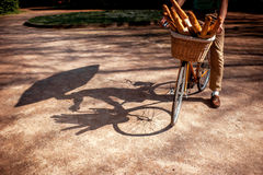 Shadows of  a bicycle with basket full of baguettes in the park Stock Image