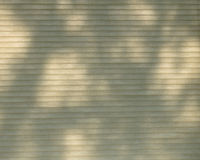 Shadows from branches outside cellular window shade. Energy efficient cellular window shade allows shadows from tree branches to create pattern royalty free stock images