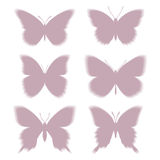Shadows of butterflies eps10 Royalty Free Stock Image