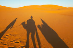 Shadows of camel and man. In desert sand Royalty Free Stock Photography