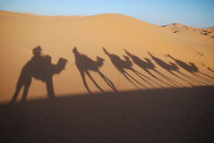 Shadows of camel riders Royalty Free Stock Photo