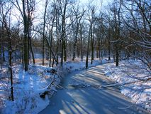Allerton Park Winter Landscape Royalty Free Stock Photography
