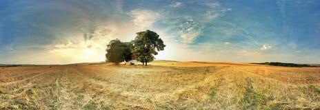 shadows den blåa långa naturen för hösten skyen Royaltyfria Foton