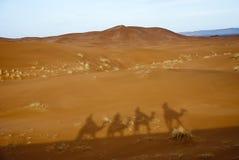 Shadows in the desert. Shadow of a camel caravan in the Sahara desert Stock Photo