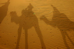 Shadows in the desert. A caravan of tourists throws shadows on the desert sand stock photography