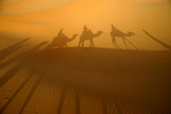 Shadows in the desert. A caravan of tourists throws shadows on the desert sand stock photo