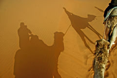 Shadows in the desert. A caravan of tourists throws shadows on the desert sand royalty free stock photos