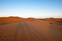 Shadows on the dunes of the Sahara Royalty Free Stock Images