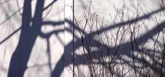 Shadows on fence Royalty Free Stock Photography