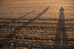 Shadows on the field. Shadows of three people on a plowed field royalty free stock image