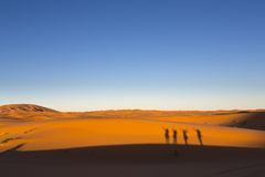 Shadows of happy people on dunes, Desert Royalty Free Stock Photo