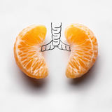 Shadows of illness. A health concept of unhealthy human lungs of a smoker with lung cancer in dark shadows, made of mandarin segments stock photo