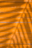 Shadows of leaves on yellow lath. Wood Stock Image