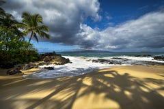 Free Shadows Of Palm Trees At Secret Beach, Maui, Hawaii, USA Royalty Free Stock Image - 70264106