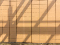 Shadows on orange tiled wall background. Blank copyspace. Real. Royalty Free Stock Images