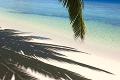 Shadows of the palm tree. On the island Gan in Indian Ocean, Maldives Stock Photography
