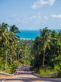 Shadows from palm trees on the road of the island of Phangan stock images