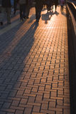 Shadows of the people. Shadows of people walking on a city street at the dusk Royalty Free Stock Images
