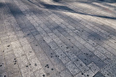 Shadows of people walking in a park.  Royalty Free Stock Photography