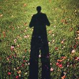 Shadows. Photo displaying a shadow surround by leaves Royalty Free Stock Image