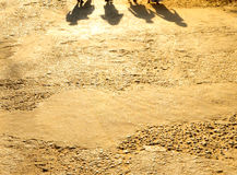 Shadows, Rajasthan, India. Shadows of people walking in Pushkar, India Stock Photos