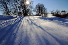 Shadows on the snow Royalty Free Stock Images
