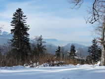 Shadows on the snow. Landscape from Carpathians in Romania Royalty Free Stock Photography