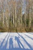 Shadows on snow stock image