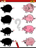 Shadows task with pig Royalty Free Stock Photography