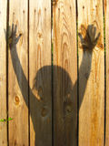 Shadows of teen's hand raising up on the fence Royalty Free Stock Photography