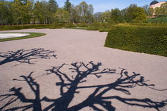 Shadows from tree branches in a park. A summer scene from the botanical garden in Uppsala, Sweden. Long tree shadows cast on the ground with the background Royalty Free Stock Image