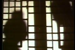 Shadows of two people talking behind shoji screen stock video