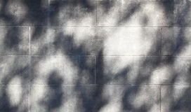 Shadows On White Cinder Block Wall Stock Photography