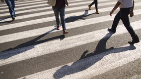 Shadowy Crossing. 4 sets of legs travel across a pedestrian crossin. No face visible. Three people walking in one direction and a lone man with strong shadow stock photos