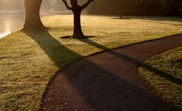 Shadowy park by lake. Scenic view of trees casting shadows on grass in park with lake or river in background Stock Photography