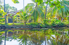 The shady banks of Hamilton`s Canal, Sri Lanka. The scenic cottages of Wattala suburb of Colombo are hidden behind the lush green palms on the bank of Hamilton`s Stock Photos