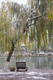Shady bower on the west lake in hangzhou,China Royalty Free Stock Image