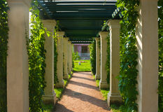 Shady colonnade Stock Image