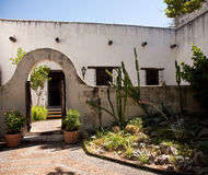 Shady garden in old Mexican house. Garden in a Mexican style yard in San Antonio with cactus royalty free stock photography