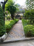 Walkpath across garden in front our residence. Shady green grass orchid flowers tree plants bricks cement step bangkok Royalty Free Stock Photography