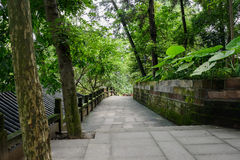 Shady hillside flagstone path with balustrade in summer woods Royalty Free Stock Photo