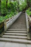 Shady hillside stone stairway witn balustrade in summer woods Stock Photos