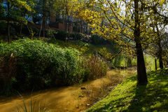 Shady lawn by brook before apartments in sunny winter morning Royalty Free Stock Photos