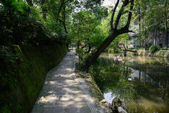 Shady path along pond in sunny summer Royalty Free Stock Photos