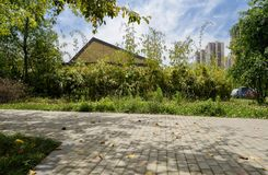 Shady path in city on sunny summer day Royalty Free Stock Photo