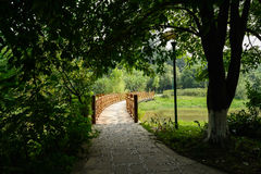 Shady path at head of wooden bridge in sunny summer Royalty Free Stock Images